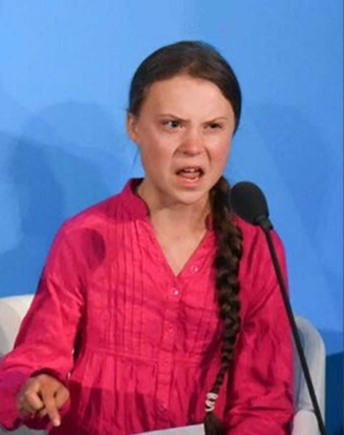 Greta Thunberg How Dare You